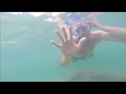Snorkeling at Fort Zachary Taylor State Park