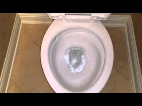 American Standard Optum VorMax Toilet In Action!