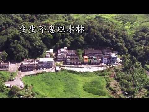 香港生物多樣性系列 - 生生不息風水林
