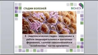 Приборы БИОМЕДИС. Обучение методу БРТ. Урок 4. Здоровье и развитие болезни