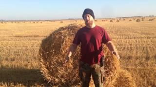 видео Сельхоз-портал Красноятска