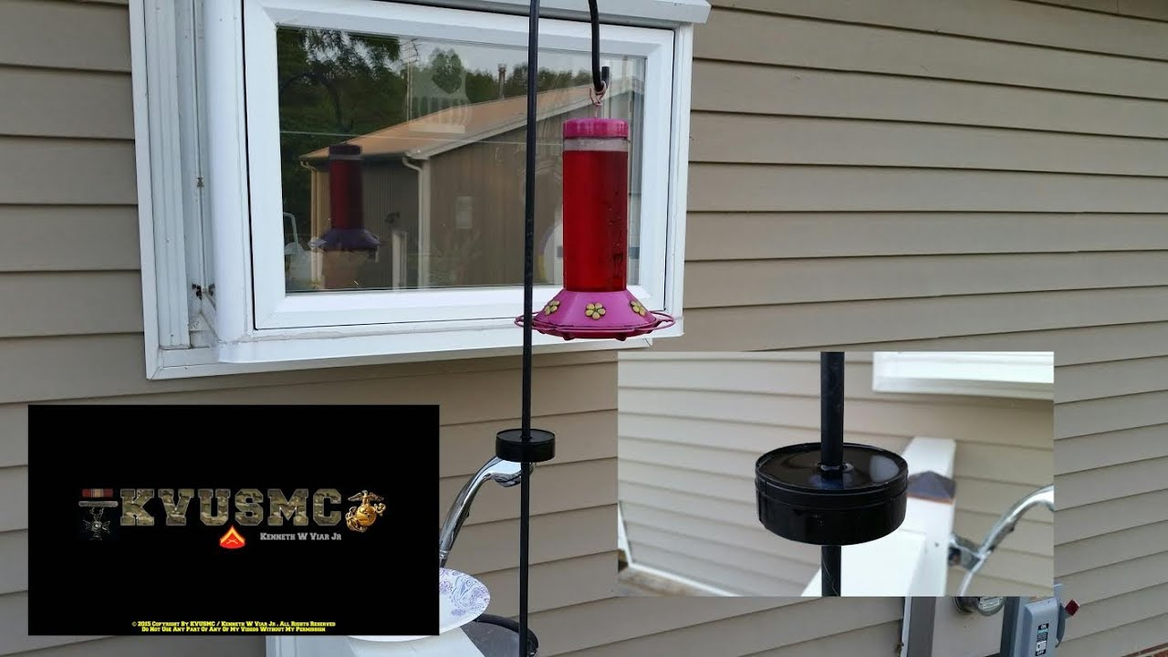 keeping ants out of your hummingbird feeder using a tobacco can by kvusmc youtube. Black Bedroom Furniture Sets. Home Design Ideas