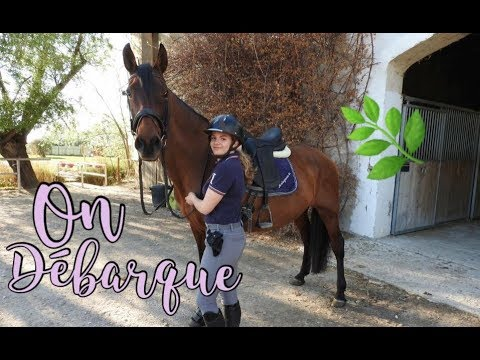 [ Vlog ] Départ en Camargue ! (8 Avril)