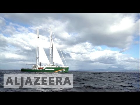 Save the seas: Greenpeace campaigns to protect Chilean marine life
