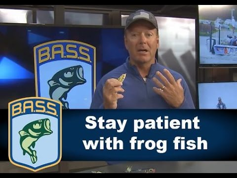 Tips for fishing with a frog
