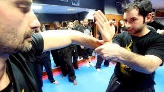 Goodies#26 : Cours De Wing Chun Kung Fu Avec Greg Gothelf (Fushan Kwoon - Partie 1)