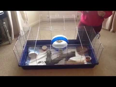 how to make a pygmy puff cage