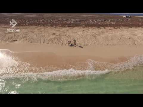 Biopixel Drone promo