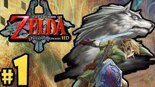 The Legend of Zelda Twilight Princess HD Gameplay Walkthrough PART 1 Ordon Opening Nintendo Wii U