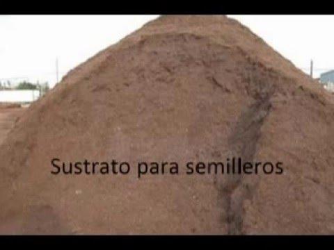 Sustrato para semilleros youtube - Tierra para semilleros ...