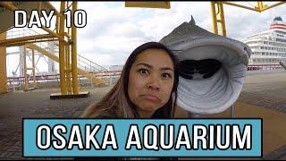 OSAKA AQUARIUM & DOTONBORI FOOD TOUR l JAPAN VLOG 10