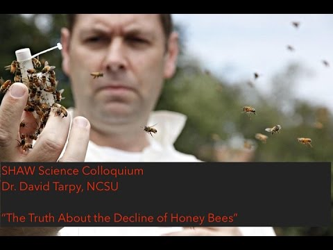 The Truth About the Decline of Honey Bees   Dr. David Tarpy   SHAW Science Colloquium