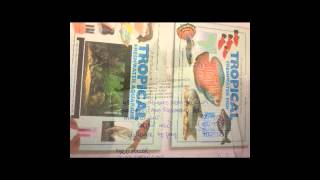 Aquarium With Cabinet Fully Kitted (w48cm X L128cm X H128cm