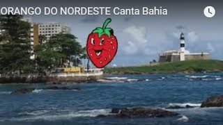 #MORANGO DO NORDESTE   Canta Bahia