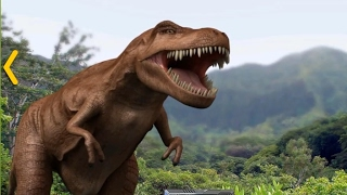 Tổng hợp tất cả khủng long: khủng long bạo chúa, khủng long ba sừng, khủng long ăn cỏ ...