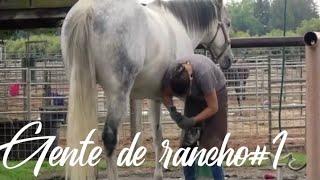 Gente de rancho#1 Película