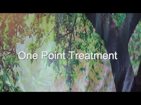 ancient-remedies:-treatment-for-ear-disorders- -one-point-treatment