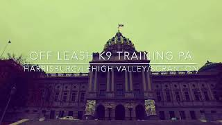 Pennsylvania Dog Trainers: Off Leash K9 Training || Harrisburg PA Board & Train Visit