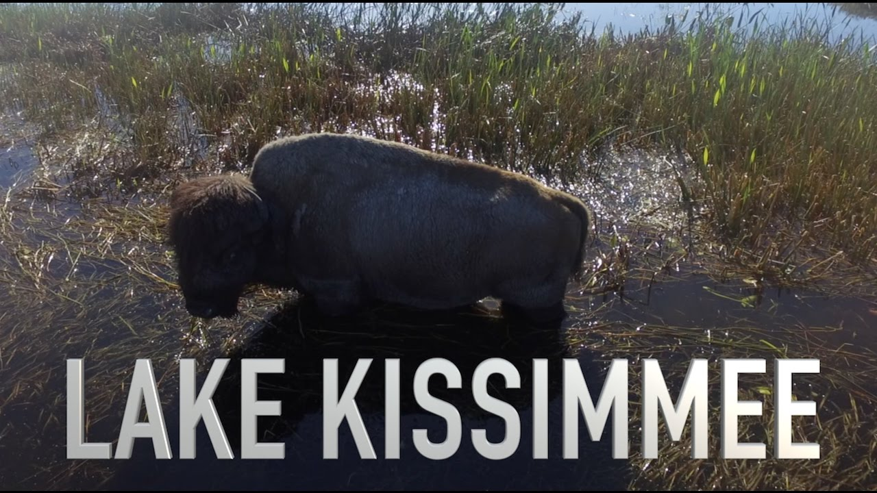 Quick fishing trip to lake kissimmee youtube for Lake kissimmee fishing report