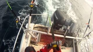Combat Albacore Tuna Charleston Oregon.mp4