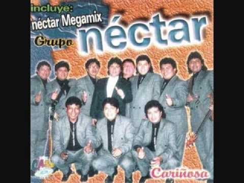 GRUPO NECTAR   MIX