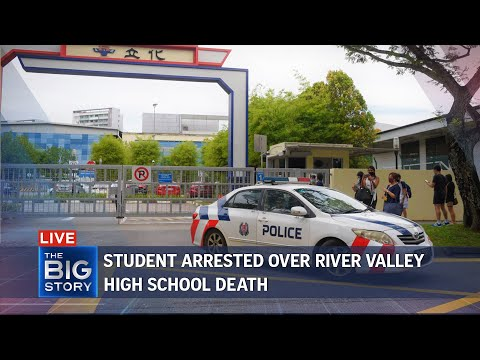 Sec 4 student arrested for alleged killing in River Valley High School | THE BIG STORY