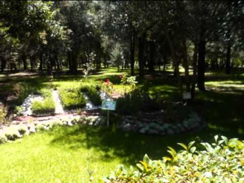 Visita a tlaxcala jardin botanico y acueducto youtube for Botanico jardin