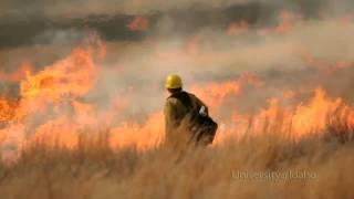 Student video: Wildland Fire Program Service Learning