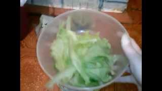 вкусный салат листовой СПАР (spar) - листья салата
