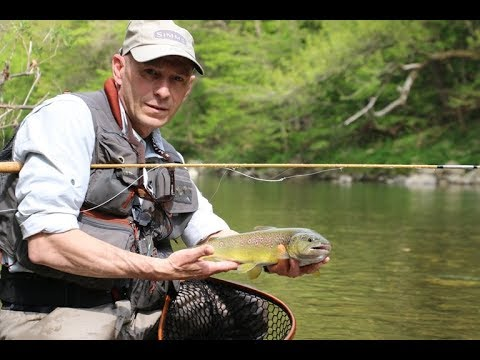 Sage Trout Spey HD Rod Review | Ashland Fly Shop from YouTube · Duration:  5 minutes 34 seconds