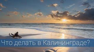 видео что посмотреть в Калининграде