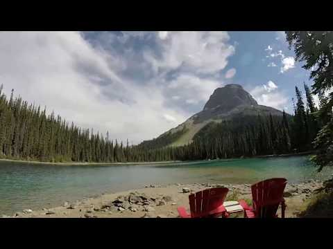 My hike in Yoho to Yoho Lake and part of the Iceline trail.