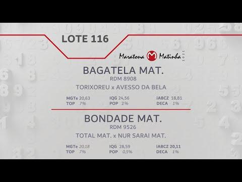 LOTE 116 Maratona Matinha