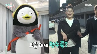 [HOT] Penguin clothes, 전지적 참견 시점 20191109