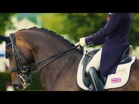 Dressage | Beauty | Grace | Partnership