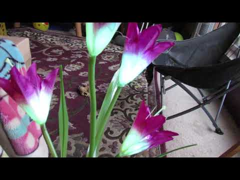 Outdoor Solar Flower Decorative Light 2 Pack