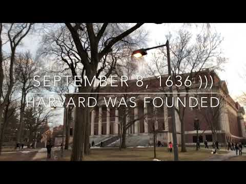 Boston, Harvard, libraries
