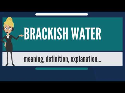 What is BRACKISH WATER? What does BRACKISH WATER mean' BRACKISH WATER meaning & explanation