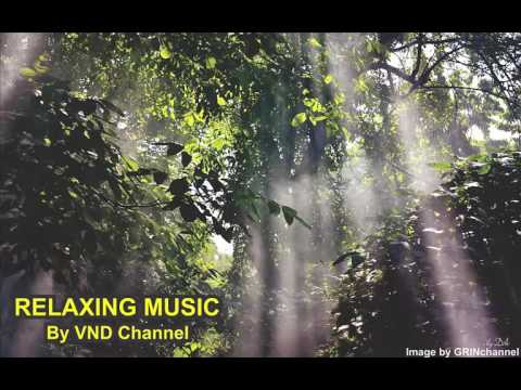 Relaxing Music Therapy for Stress Relief , Nature Music, Calming Music and Inner Peace