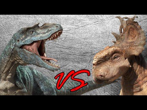 Gorgosaurus vs Pachyrhinosaurus