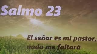 una reflexi  n al coraz  n  salmo 23  1 6  el libro de los salmos