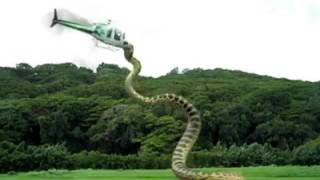 Most viewed vdo in youtube anaconda 3