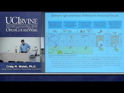 Biological Sciences M121. Immunology with Hematology. Lecture 18. Bodily Defense Against Infection.