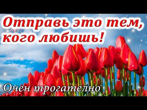 С Добрым Зимним Утром! Красивое Музыкальное Пожелание! Доброе Утро! С Добрым Утром!