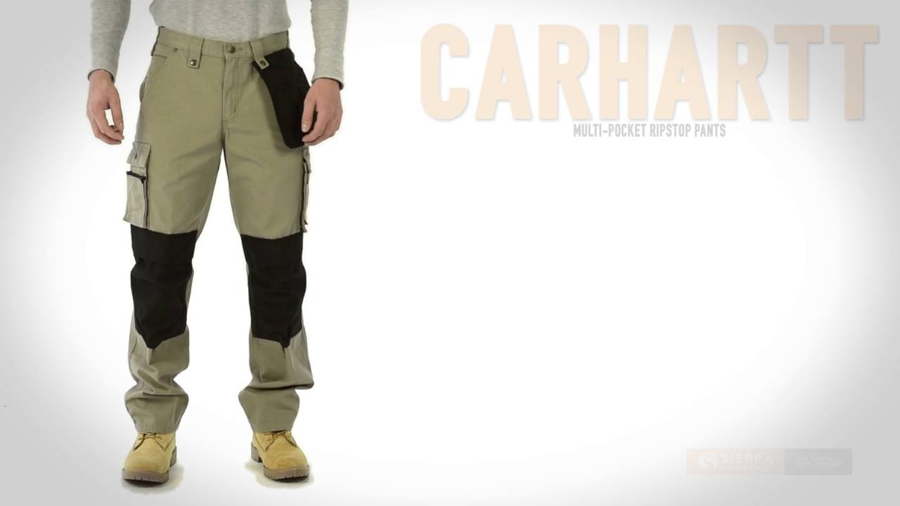 Carhartt Hose Duck Multipocket Tech Pant