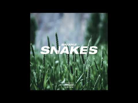 Bazanji - Snakes (Prod. Taylor King) [Official Audio]