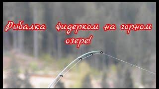 Рыбалка с фидерком на горном озере