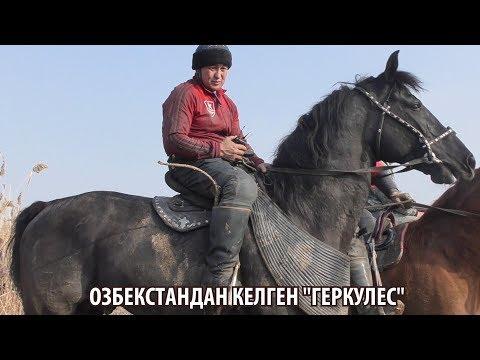 Байыш Ниязов ӨЗБЕКСТАНДАН КЕЛГЕН АТЫ