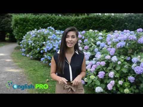 EnglishPro la scuola di inglese online di AngloAmerican
