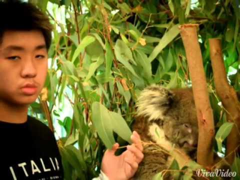 Perth Wildlife Park 1/12/2014